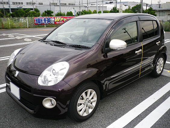 passo_car
